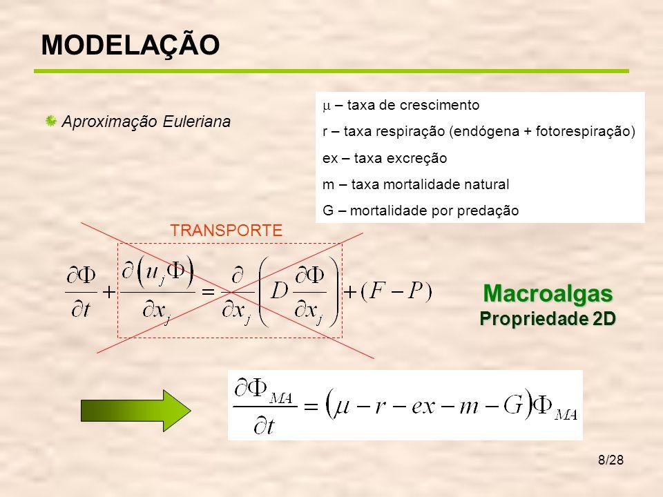 8/28 Aproximação Euleriana TRANSPORTEMacroalgas Propriedade 2D – taxa de crescimento r – taxa respiração (endógena + fotorespiração) ex – taxa excreçã