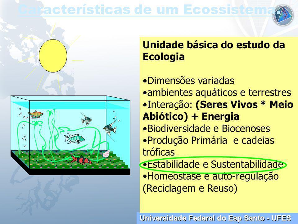 Características de um Ecossistema.