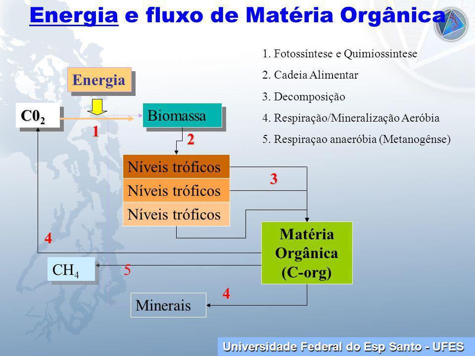 Universidade Federal do Esp Santo - UFES Energia e fluxo de Matéria Orgânica C0 2 Biomassa Níveis tróficos Matéria Orgânica (C-org) Minerais Energia 1.