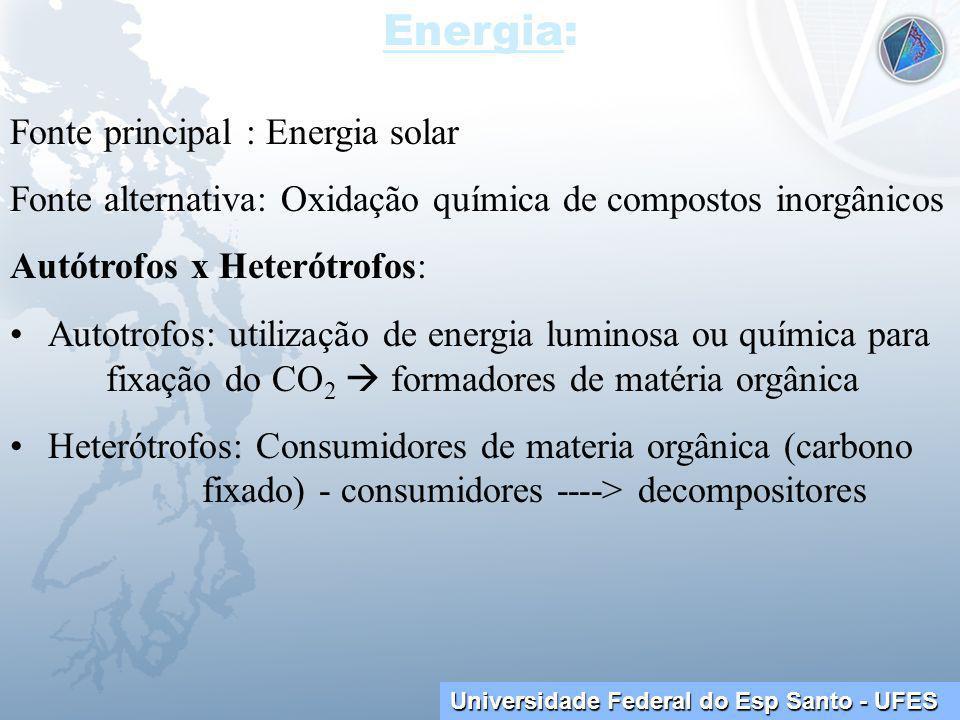 Universidade Federal do Esp Santo - UFES Energia: Fonte principal : Energia solar Fonte alternativa: Oxidação química de compostos inorgânicos Autótrofos x Heterótrofos: Autotrofos: utilização de energia luminosa ou química para fixação do CO 2 formadores de matéria orgânica Heterótrofos: Consumidores de materia orgânica (carbono fixado) - consumidores ----> decompositores