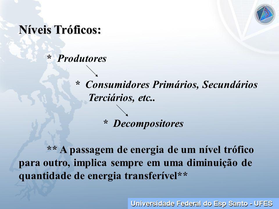 Universidade Federal do Esp Santo - UFES Níveis Tróficos: * Produtores * Consumidores Primários, Secundários Terciários, etc..