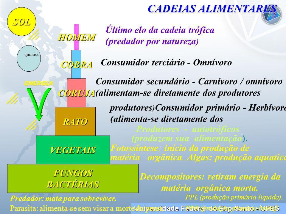 Universidade Federal do Esp Santo - UFES HOMEM COBRA VEGETAIS FUNGOSBACTÉRIAS RATO CORUJA SOL Consumidor terciário - Omnívoro Consumidor secundário - Carnívoro / omnívoro (alimentam-se diretamente dos produtores produtores ) Consumidor primário - Herbívoro (alimenta-se diretamente dos Produtores - autotróficos (produzem sua alimentação).