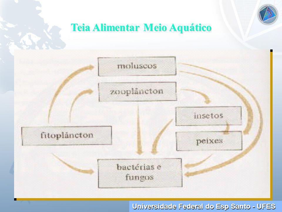 Universidade Federal do Esp Santo - UFES Teia Alimentar Meio Aquático