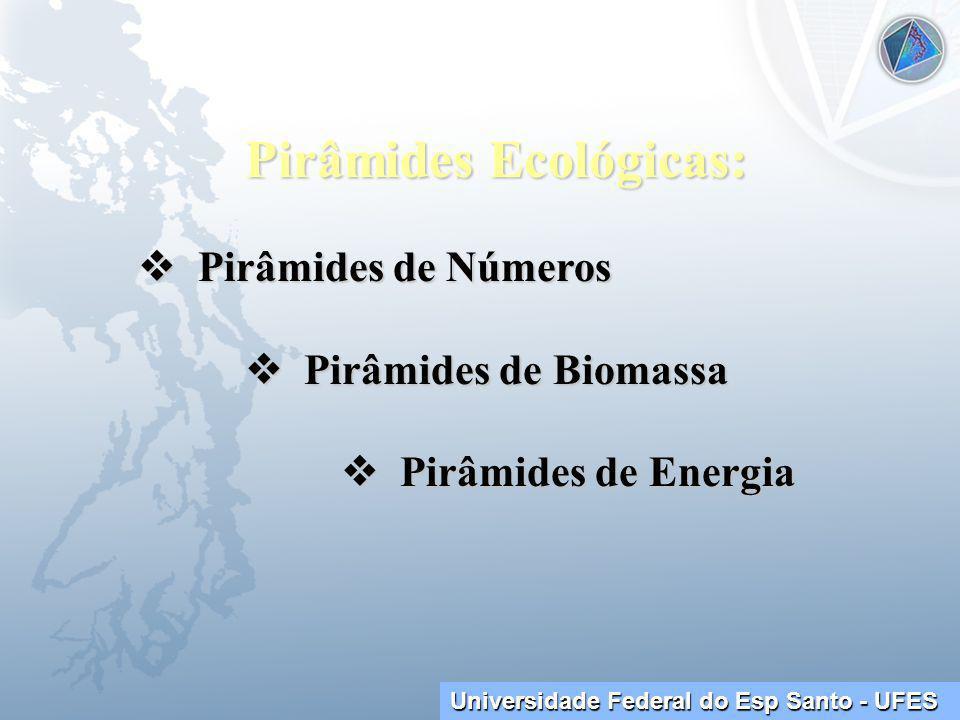 Universidade Federal do Esp Santo - UFES Pirâmides Ecológicas: Pirâmides de Números Pirâmides de Números Pirâmides de Biomassa Pirâmides de Biomassa Pirâmides de Energia Pirâmides de Energia