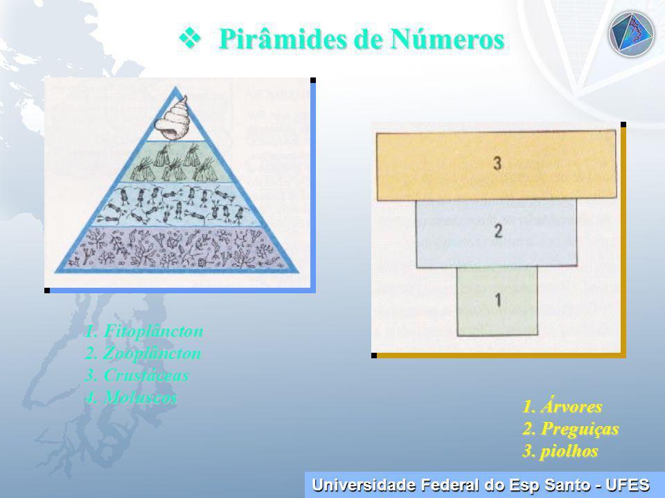 Universidade Federal do Esp Santo - UFES Pirâmides de Números Pirâmides de Números 1.