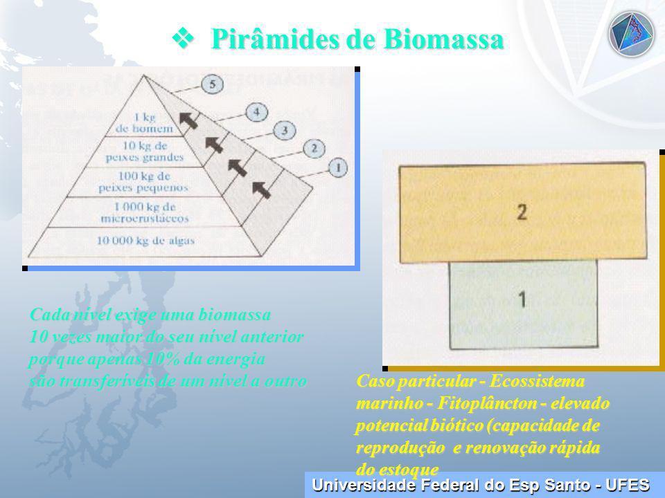 Universidade Federal do Esp Santo - UFES Pirâmides de Biomassa Pirâmides de Biomassa Cada nível exige uma biomassa 10 vezes maior do seu nível anterior porque apenas 10% da energia são transferíveis de um nível a outro Caso particular - Ecossistema marinho - Fitoplâncton - elevado potencial biótico (capacidade de reprodução e renovação rápida do estoque