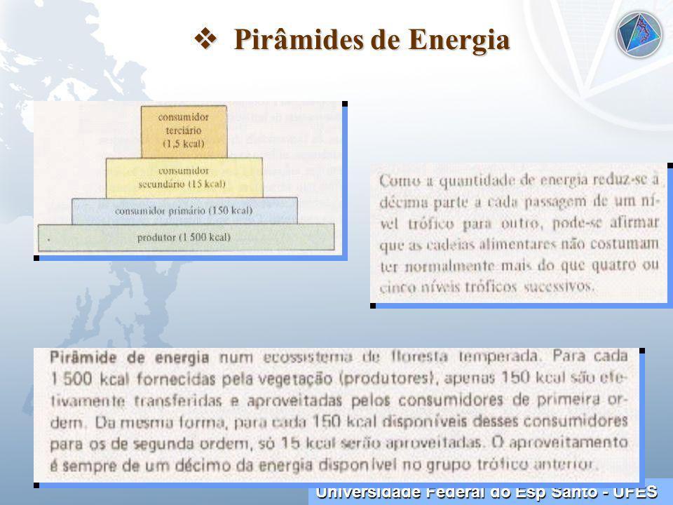 Universidade Federal do Esp Santo - UFES Pirâmides de Energia Pirâmides de Energia