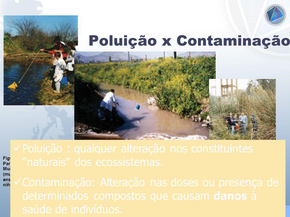 Universidade Federal do Esp Santo - UFES Poluição x Contaminação Figura 8.2.7.