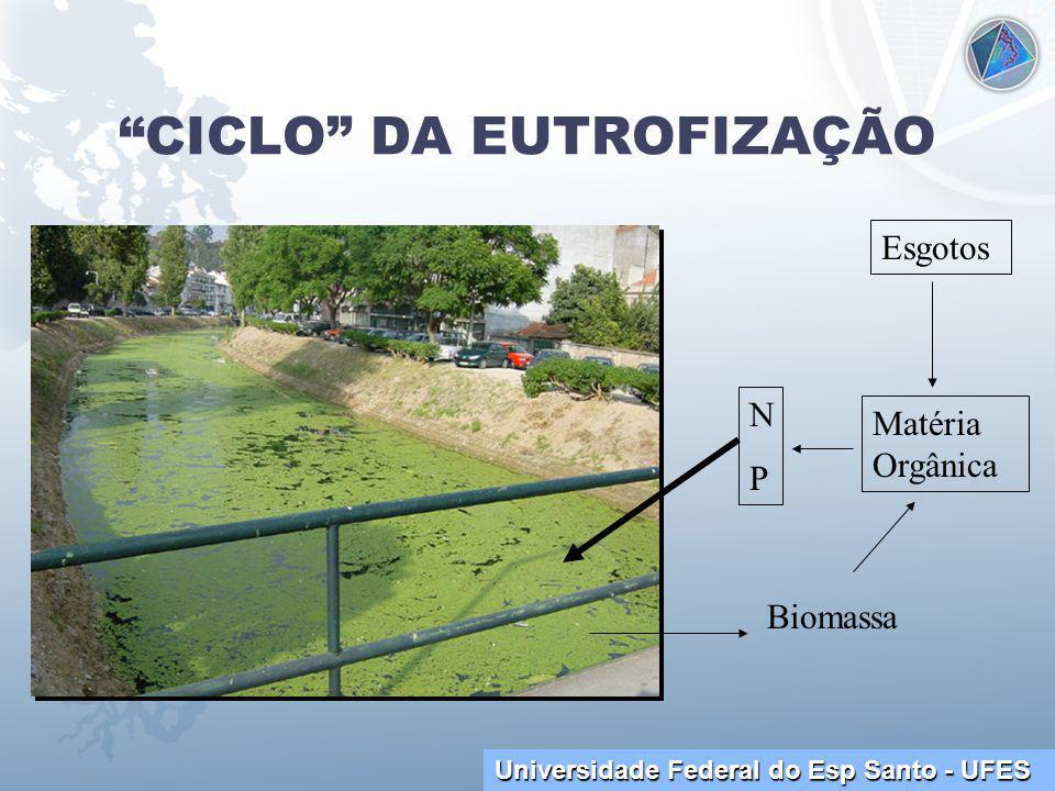 Universidade Federal do Esp Santo - UFES CICLO DA EUTROFIZAÇÃO NPNP Matéria Orgânica Esgotos Biomassa