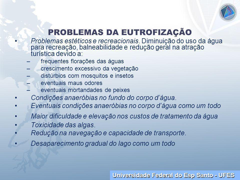 Universidade Federal do Esp Santo - UFES PROBLEMAS DA EUTROFIZAÇÃO Problemas estéticos e recreacionais.