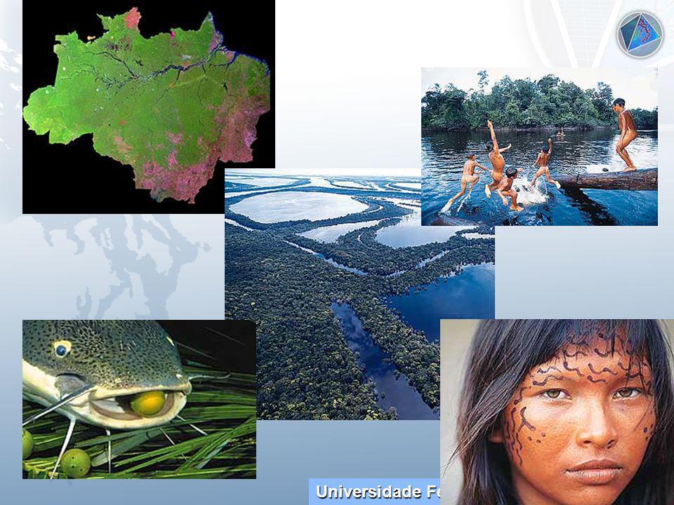 Universidade Federal do Esp Santo - UFES Ambiente AgendaAmbiente BiotecnologiaAmbiente EnergiaAmbiente Gestão Ambiente Links Ambiente Resíduos Ambiente AgropecuárioAmbiente Educação Ambiente Estadual Ambiente Índios Ambiente NaturalAmb.