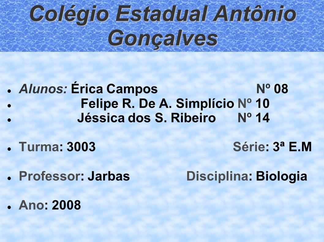 Colégio Estadual Antônio Gonçalves Alunos: Érica CamposNº 08 Felipe R. De A. Simplício Nº 10 Jéssica dos S. Ribeiro Nº 14 Turma: 3003 Série: 3ª E.M Pr