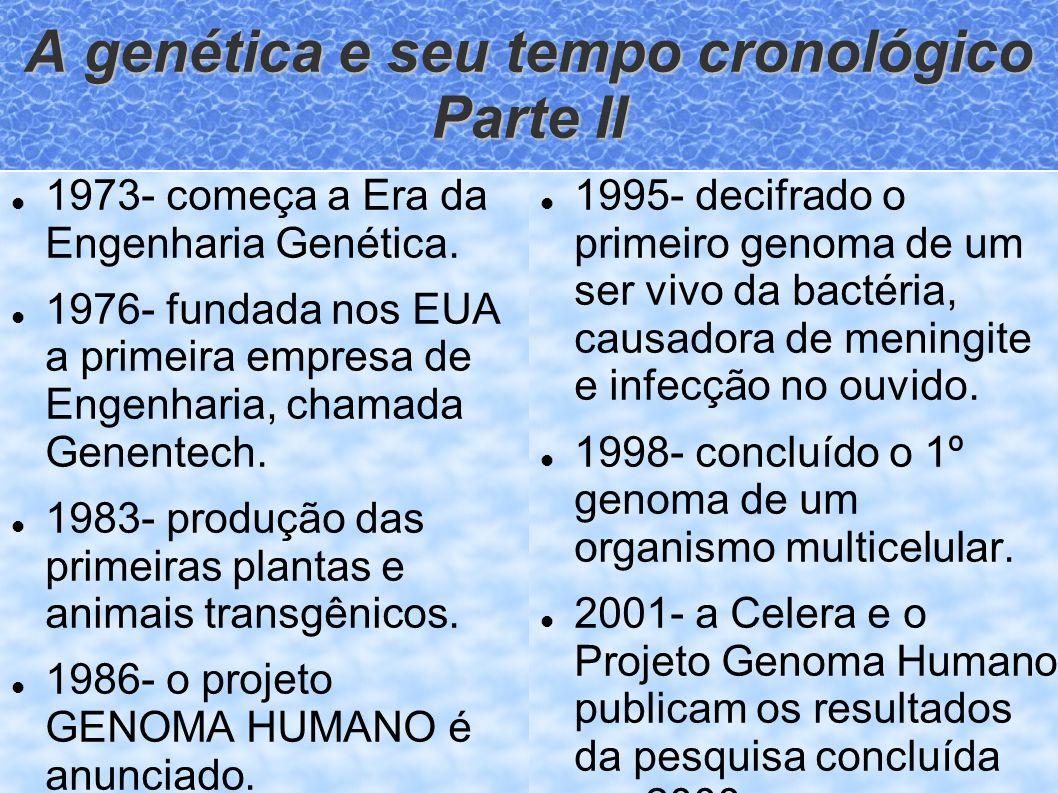 A genética e seu tempo cronológico Parte II 1973- começa a Era da Engenharia Genética. 1976- fundada nos EUA a primeira empresa de Engenharia, chamada