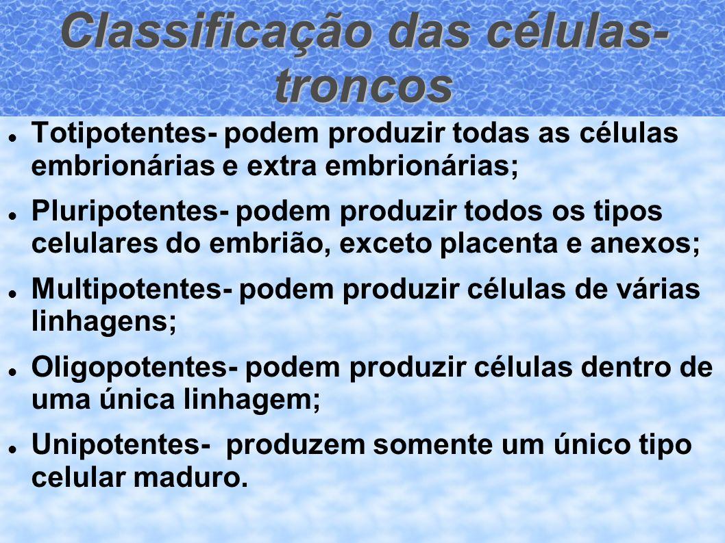 Classificação das células- troncos Totipotentes- podem produzir todas as células embrionárias e extra embrionárias; Pluripotentes- podem produzir todo