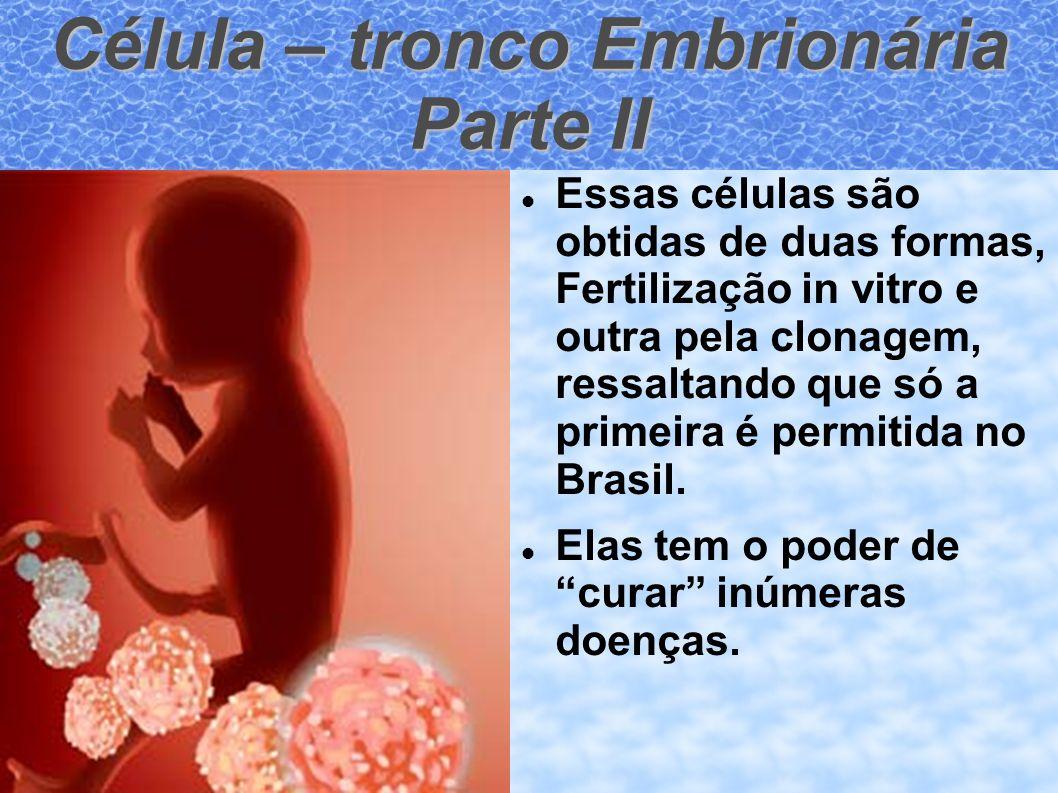 Célula – tronco Embrionária Parte II Essas células são obtidas de duas formas, Fertilização in vitro e outra pela clonagem, ressaltando que só a prime
