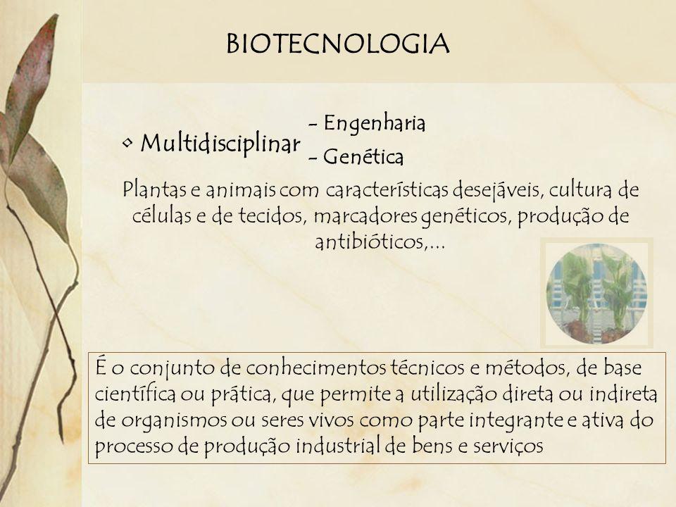 BIOTECNOLOGIA Multidisciplinar - Engenharia - Genética Plantas e animais com características desejáveis, cultura de células e de tecidos, marcadores g