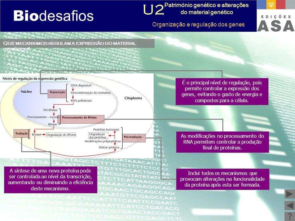 Biodesafios 12 Que mecanismos regulam a expressão do material genético? É o principal nível de regulação, pois permite controlar a expressão dos genes