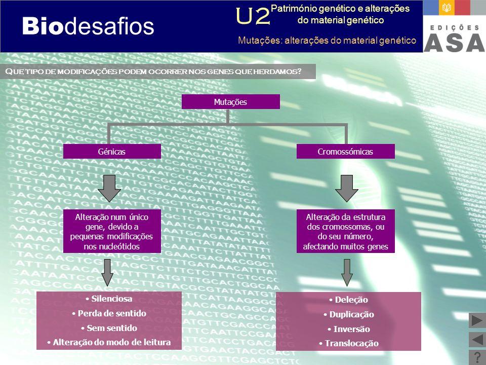 Biodesafios 12 Que tipo de modificações podem ocorrer nos genes que herdamos? Mutações Alteração num único gene, devido a pequenas modificações nos nu