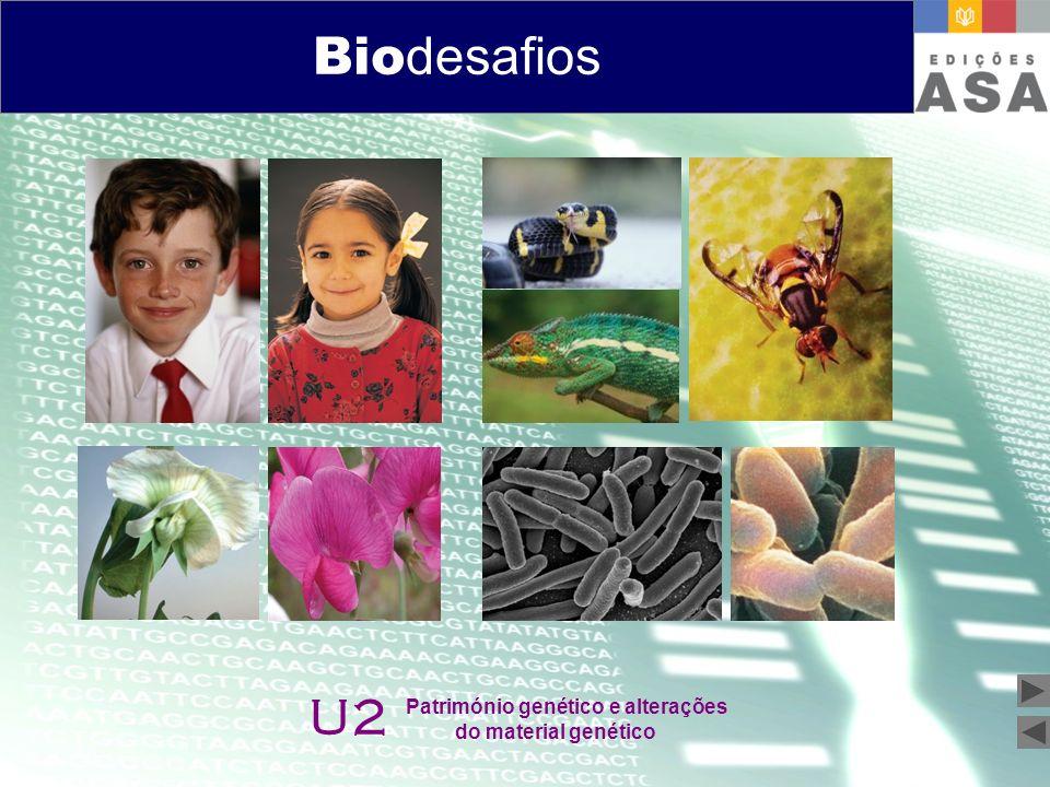 Biodesafios 12 Bio desafios U2 Património genético e alterações do material genético