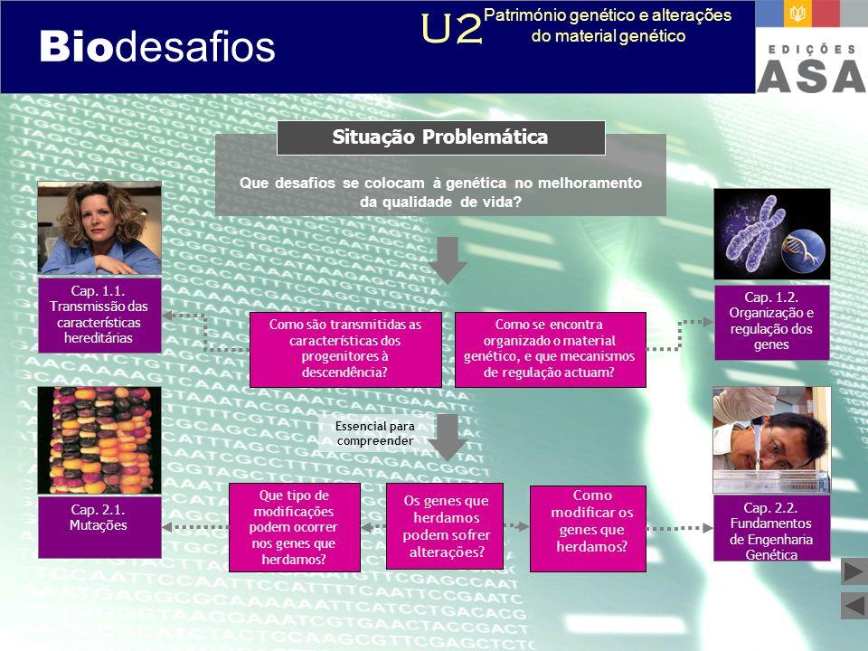 Biodesafios 12 Que desafios se colocam à genética no melhoramento da qualidade de vida? Situação Problemática Como se encontra organizado o material g