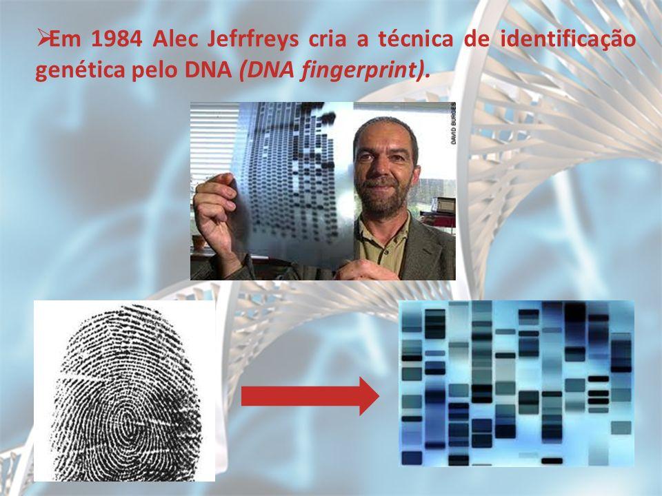 Em 1984 Alec Jefrfreys cria a técnica de identificação genética pelo DNA (DNA fingerprint).