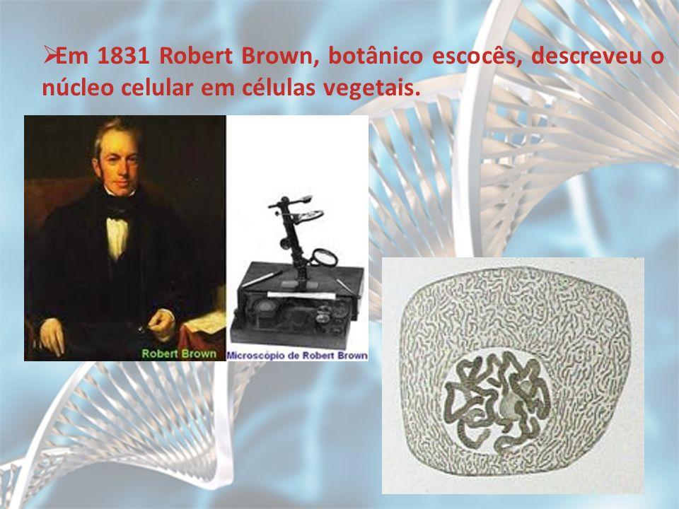 Em 1831 Robert Brown, botânico escocês, descreveu o núcleo celular em células vegetais.