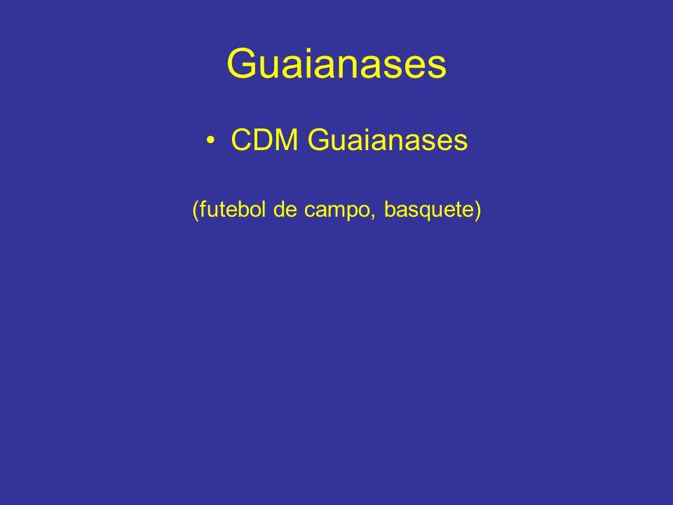 Guaianases CDM Guaianases (futebol de campo, basquete)