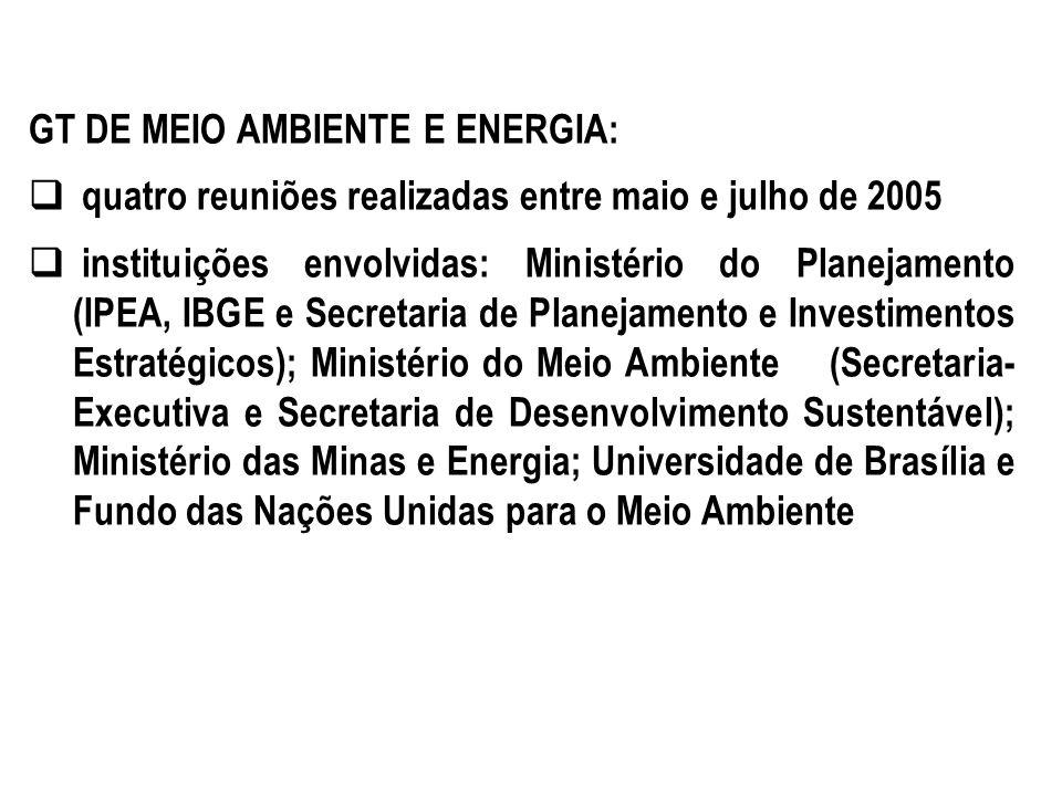 GT DE MEIO AMBIENTE E ENERGIA: quatro reuniões realizadas entre maio e julho de 2005 instituições envolvidas: Ministério do Planejamento (IPEA, IBGE e