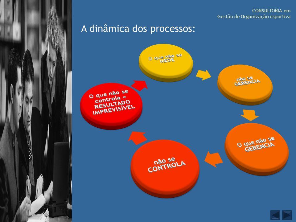 CONSULTORIA em Gestão de Organização esportiva A dinâmica dos processos: