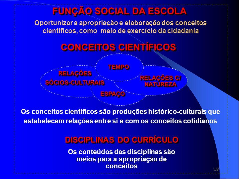 18 FUNÇÃO SOCIAL DA ESCOLA Oportunizar a apropriação e elaboração dos conceitos científicos, como meio de exercício da cidadania RELAÇÕESSÓCIOS-CULTUR