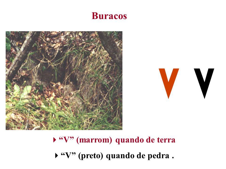 Buracos V (marrom) quando de terra V (preto) quando de pedra.