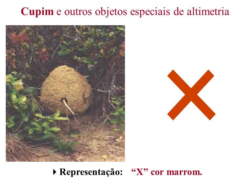 Cupim e outros objetos especiais de altimetria Representação: X cor marrom.