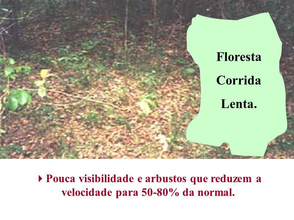 Pouca visibilidade e arbustos que reduzem a velocidade para 50-80% da normal. Floresta Corrida Lenta.