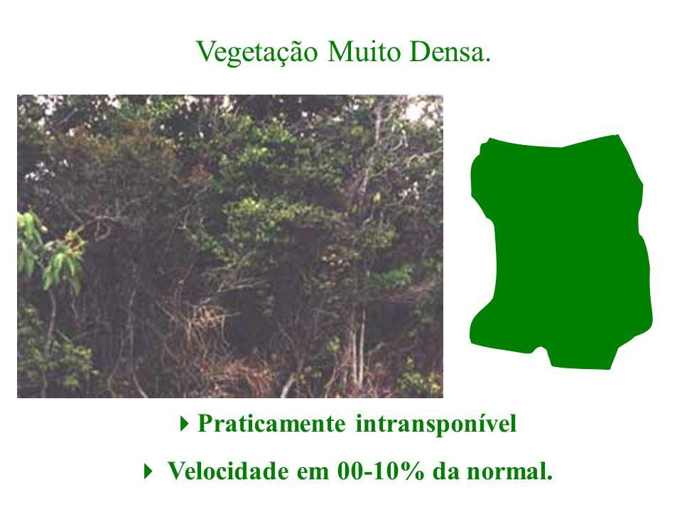 Vegetação Muito Densa. Praticamente intransponível Velocidade em 00-10% da normal.