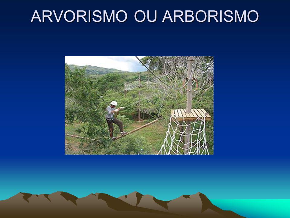 ARVORISMO OU ARBORISMO