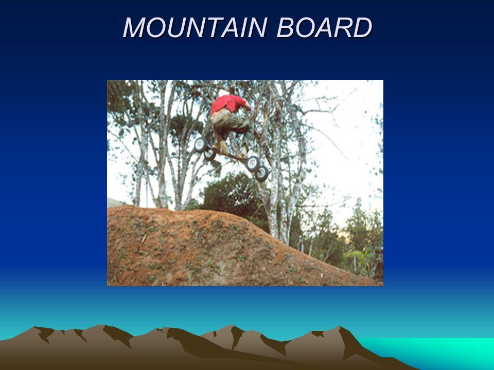 MOUNTAIN BOARD