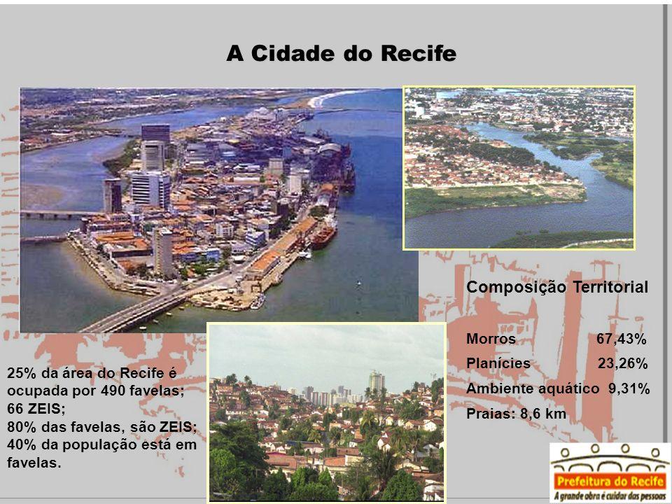 A Cidade do Recife Composição Territorial Morros 67,43% Planícies 23,26% Ambiente aquático 9,31% Praias: 8,6 km 25% da área do Recife é ocupada por 49