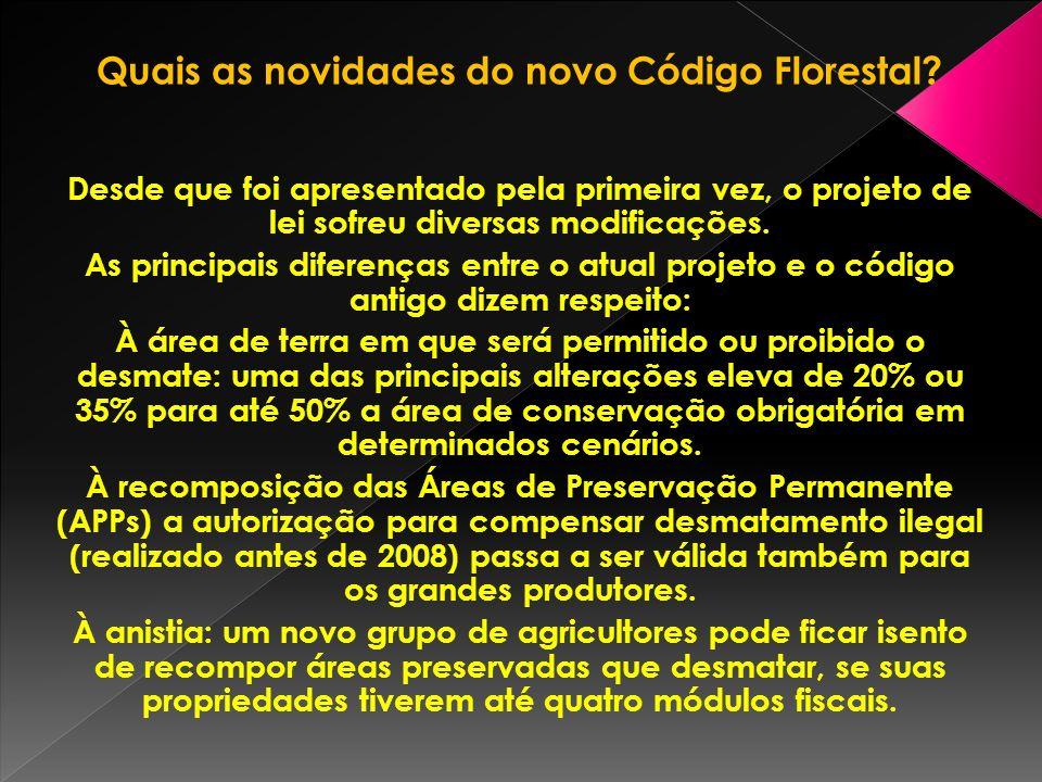 Quais as novidades do novo Código Florestal.