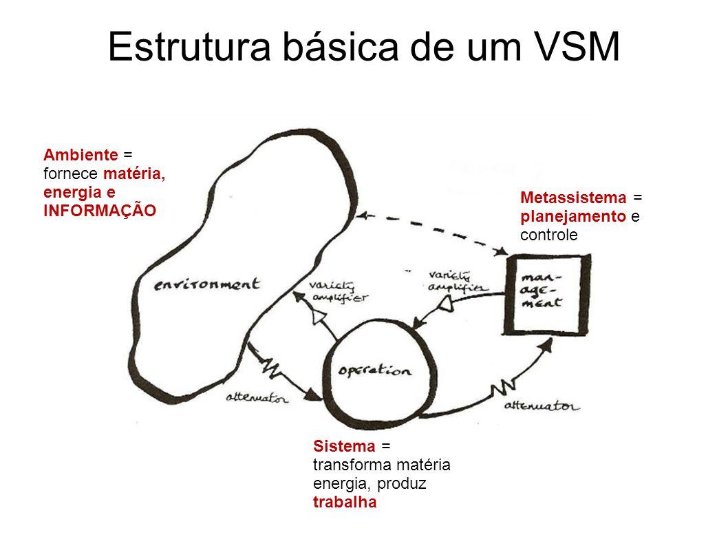 Estrutura básica de um VSM Metassistema = planejamento e controle Sistema = transforma matéria energia, produz trabalha Ambiente = fornece matéria, energia e INFORMAÇÃO