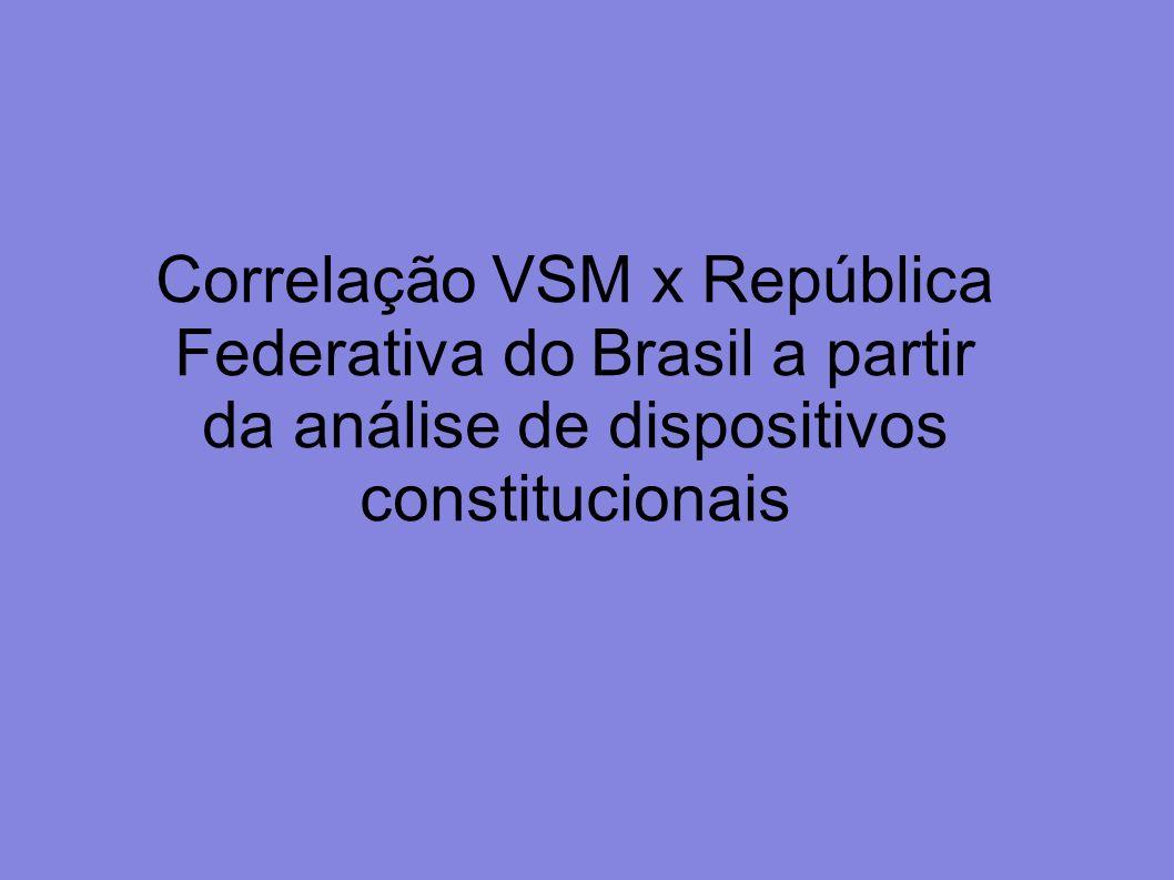 Correlação VSM x República Federativa do Brasil a partir da análise de dispositivos constitucionais