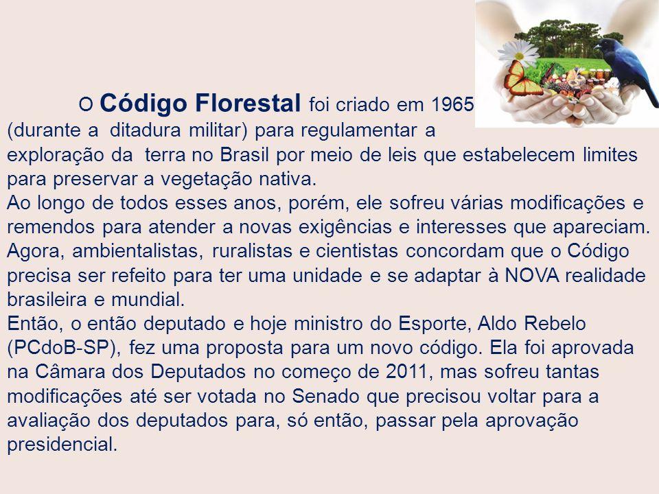 O Código Florestal foi criado em 1965 (durante a ditadura militar) para regulamentar a exploração da terra no Brasil por meio de leis que estabelecem limites para preservar a vegetação nativa.