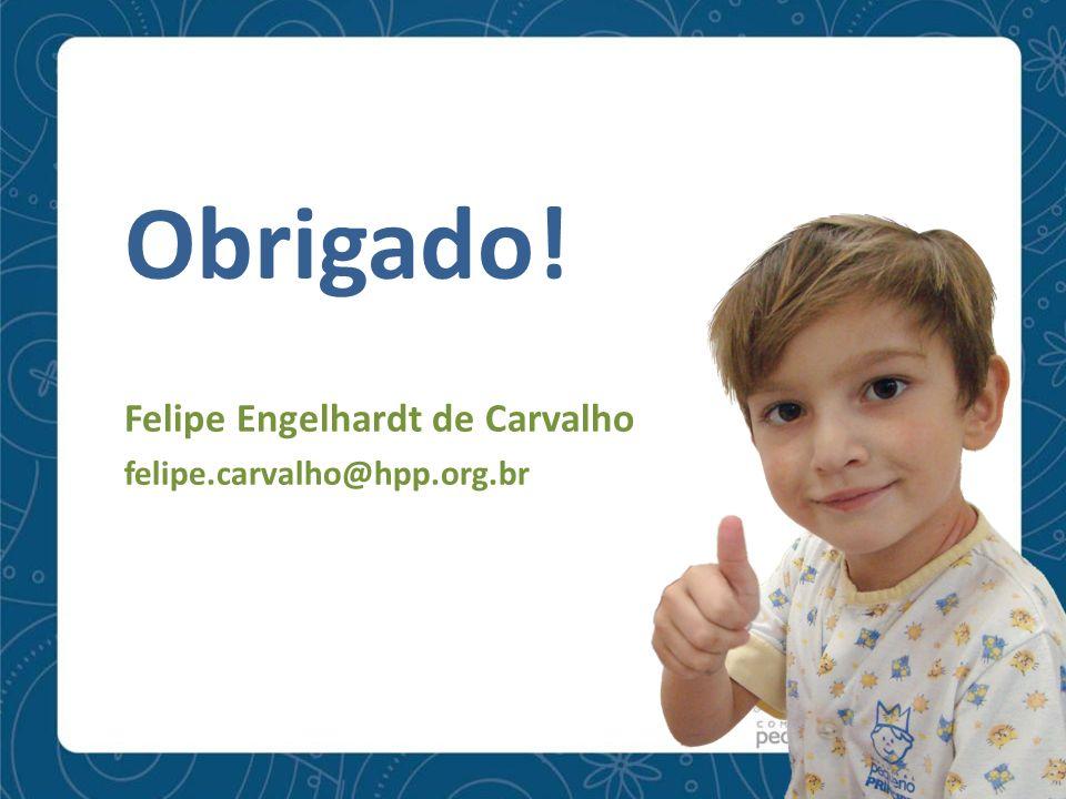 Obrigado! Felipe Engelhardt de Carvalho felipe.carvalho@hpp.org.br