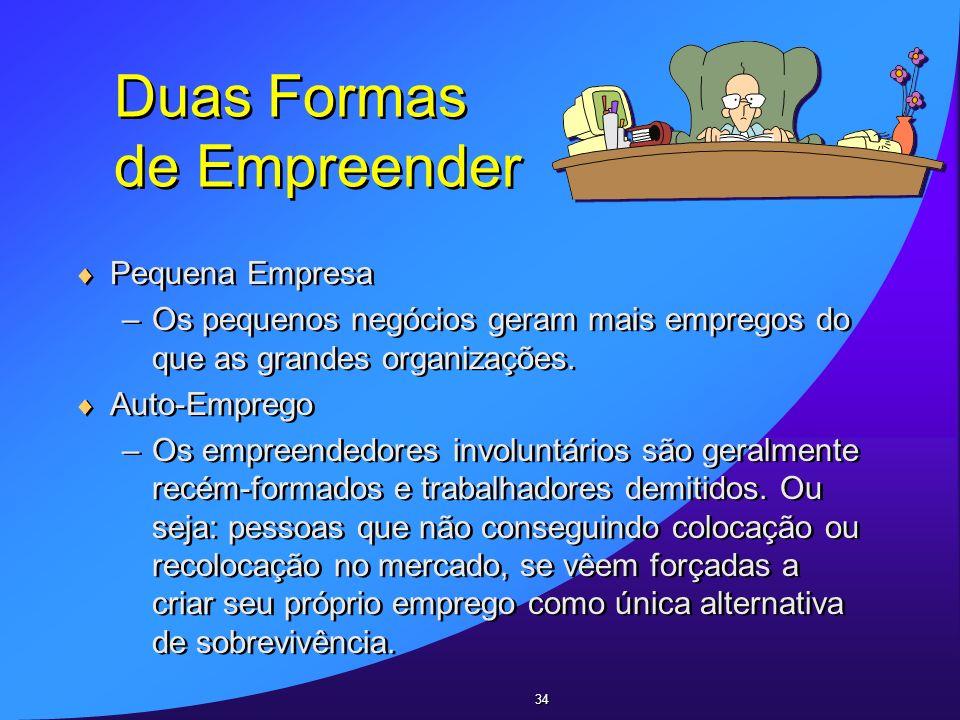 Duas Formas de Empreender Pequena Empresa –Os pequenos negócios geram mais empregos do que as grandes organizações. Auto-Emprego –Os empreendedores in