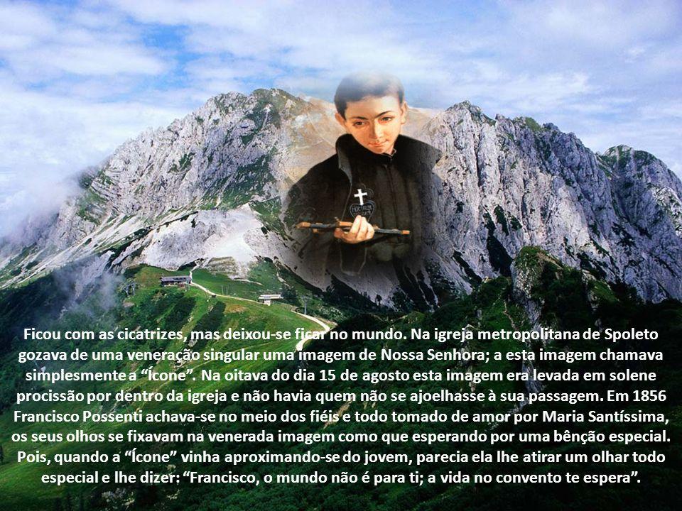 Em uma carta que lhe escreveu o Pe.Fedeschini, S.