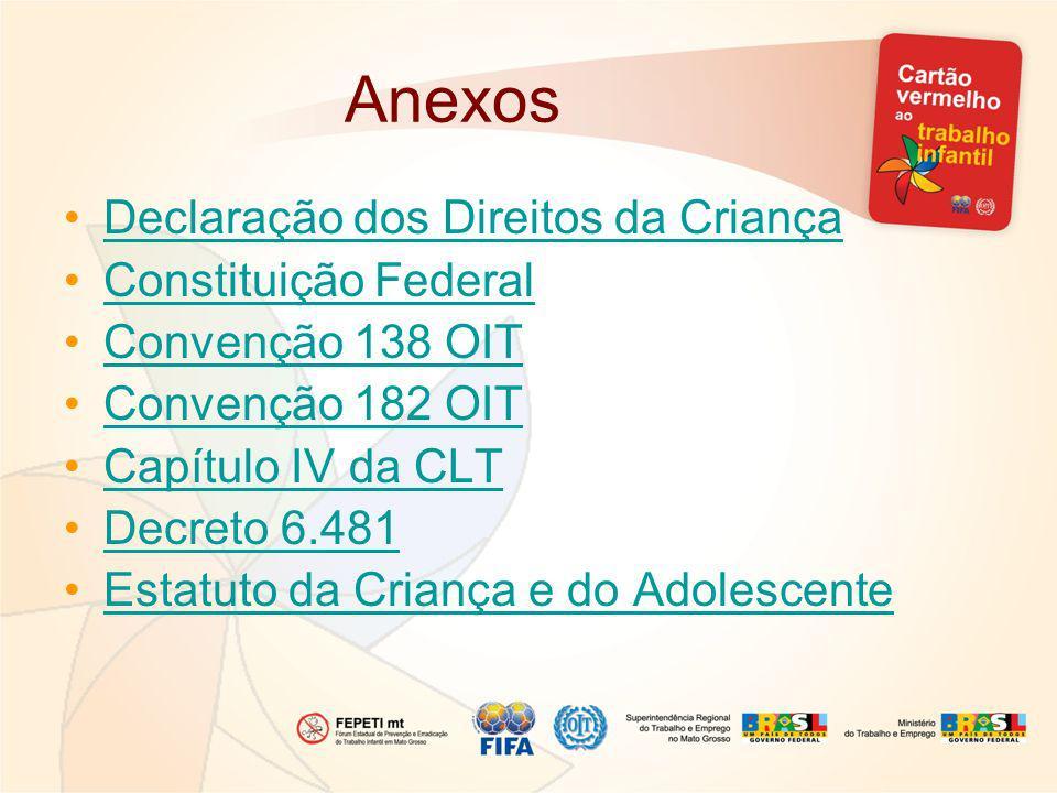 Anexos Declaração dos Direitos da Criança Constituição Federal Convenção 138 OIT Convenção 182 OIT Capítulo IV da CLT Decreto 6.481 Estatuto da Criança e do Adolescente