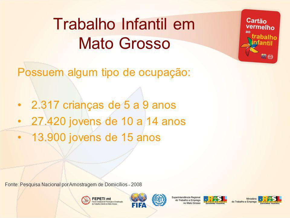 Trabalho Infantil em Mato Grosso Possuem algum tipo de ocupação: 2.317 crianças de 5 a 9 anos 27.420 jovens de 10 a 14 anos 13.900 jovens de 15 anos Fonte: Pesquisa Nacional por Amostragem de Domicílios - 2008