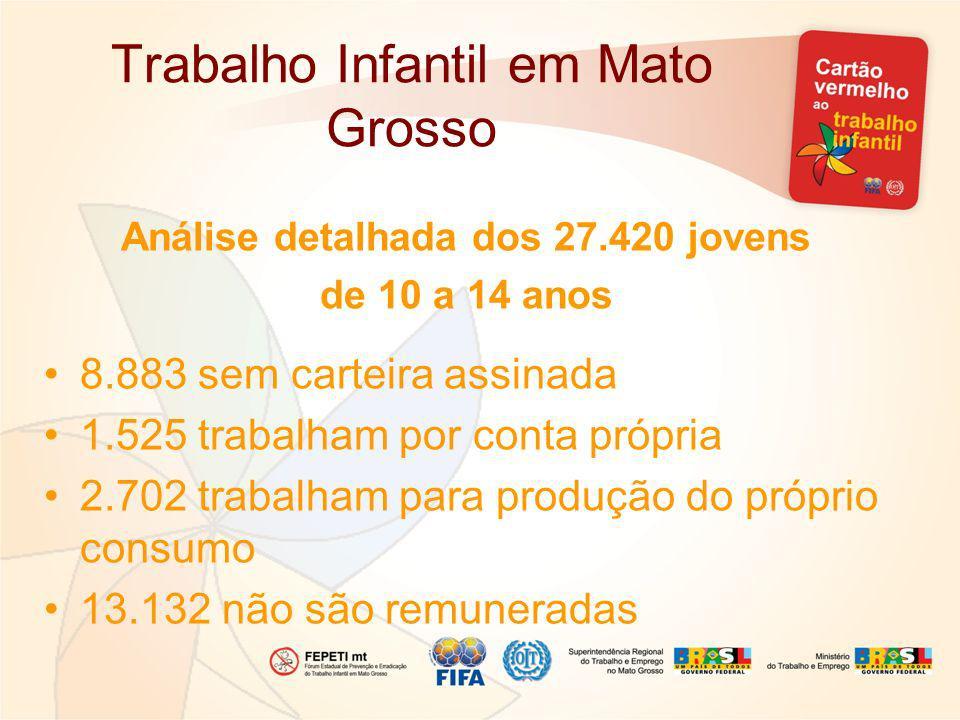 Trabalho Infantil em Mato Grosso Análise detalhada dos 27.420 jovens de 10 a 14 anos 8.883 sem carteira assinada 1.525 trabalham por conta própria 2.702 trabalham para produção do próprio consumo 13.132 não são remuneradas