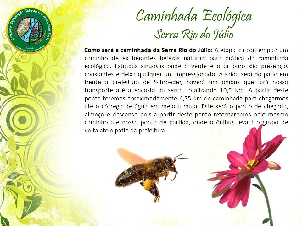 Caminhada Ecológica Serra Rio do Júlio Como será a caminhada da Serra Rio do Júlio: Como será a caminhada da Serra Rio do Júlio: A etapa irá contemplar um caminho de exuberantes belezas naturais para prática da caminhada ecológica.