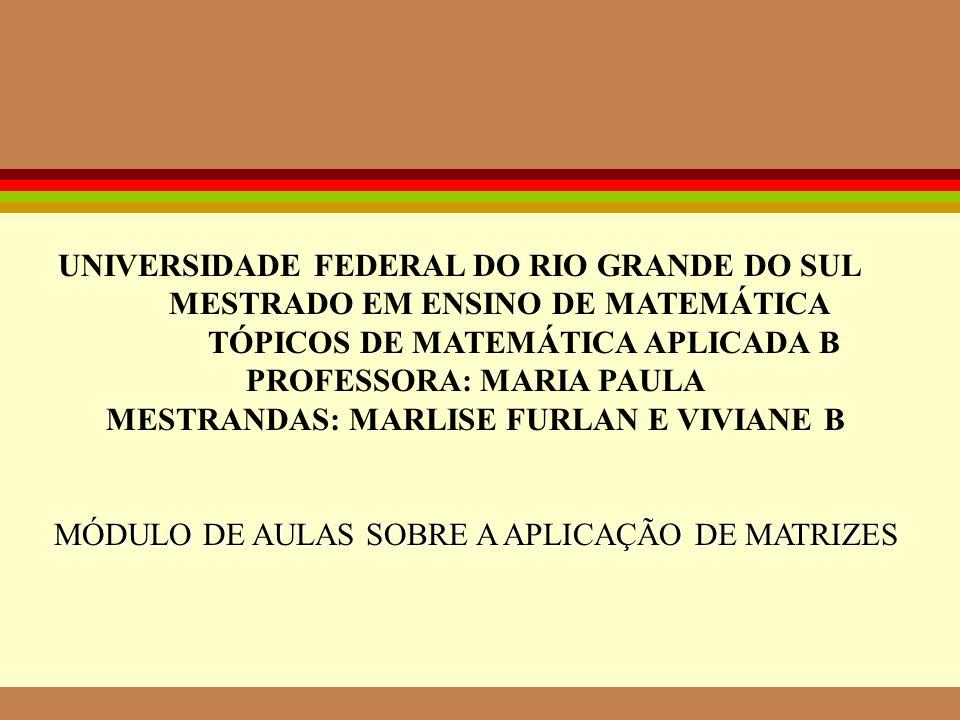 UNIVERSIDADE FEDERAL DO RIO GRANDE DO SUL MESTRADO EM ENSINO DE MATEMÁTICA TÓPICOS DE MATEMÁTICA APLICADA B PROFESSORA: MARIA PAULA MESTRANDAS: MARLISE FURLAN E VIVIANE B MÓDULO DE AULAS SOBRE A APLICAÇÃO DE MATRIZES