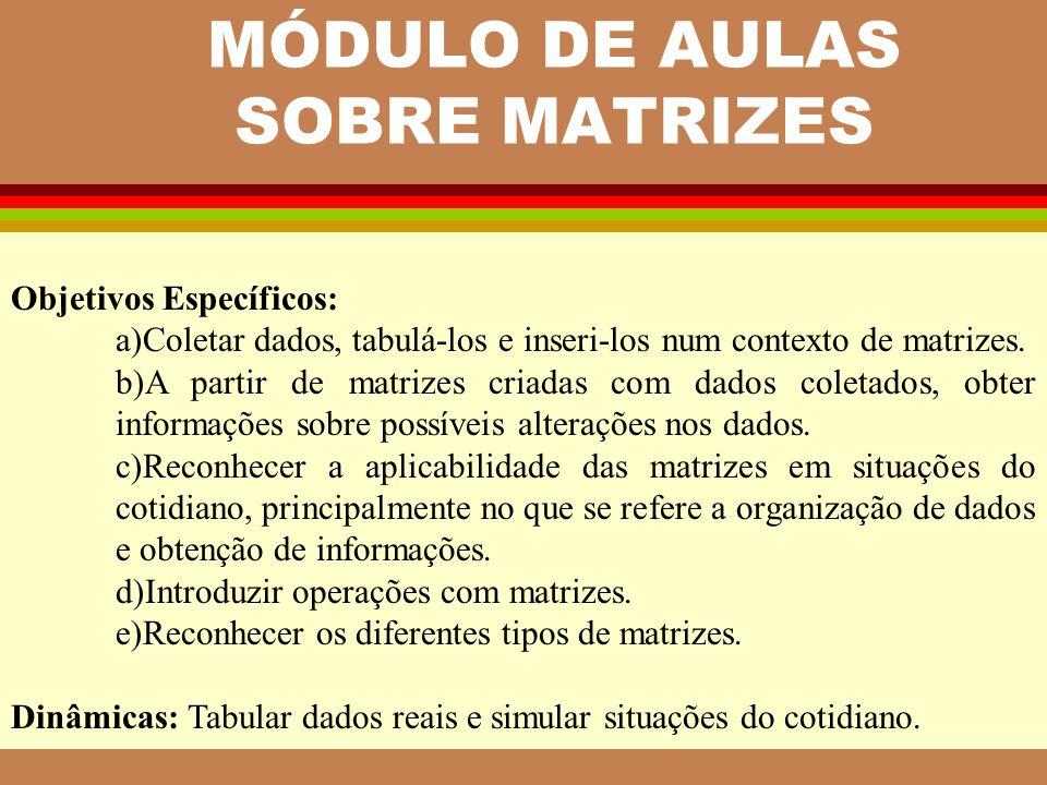 MÓDULO DE AULAS SOBRE MATRIZES Objetivos Específicos: a)Coletar dados, tabulá-los e inseri-los num contexto de matrizes. b)A partir de matrizes criada